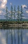 Россия, Сибирь, Среднесибирское плоскогорье, Якутия, река Оленёк ниже метеостанции Яральин