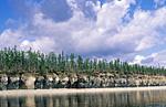 Россия, Сибирь, Среднесибирское плоскогорье, Якутия, река Оленёк выше посёлка Оленёк