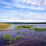 Россия, Сибирь, Западная Якутия, река Оленёк