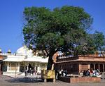 Северная Индия, штат Раджастан, «Мёртвый» город раджпутов, оставлен при оккупации англичанами