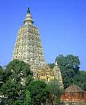 Северная Индия, Ботх Гайя, Maha Bodhi Temple, храм построен на месте, где Будду посетило озарение.