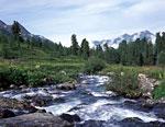 Река Большой Кокколь – приток Белой Берели