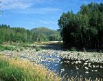 Восточный Казахстан, Западный Алтай, река Ульба