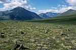 Россия, Тюменская область, Ханты-Мансийский автономный округ, окрестности Неройки, вид на долину реки Кобыла-Ю.