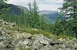 Россия, Тюменская область, Ханты-Мансийский автономный округ, долина реки Народа.