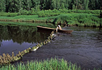 Россия, Сибирь, Иркутская область, река Катанга (Подкаменная Тунгуска) в верховьях, Илимская контора.