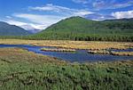 Россия, Иркутская область, Сибирь, Байкал, северо-восточная оконечность, устье реки Фролиха