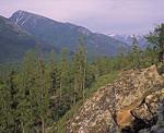 Долина реки Фролиха выше озера.
