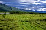 Россия, Якутия, Оймяконское нагорье, река Сунтар
