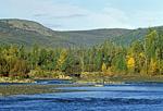 Россия, Хабаровский край, река Юдома, сразу за порогом Дикий, координаты 60°34',73 с.ш. - 140°32',16 в.д
