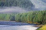 Россия, Сибирь, Иркутская область, Нижнеудинский район, Тофалария, река Гутара, окрестности посёлка Верхняя Гутара