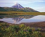 Потухший вулкан Вилючинский расположен к югу от Петропавловска-Камчатского и лежит на пути к вулканам Мутновский и Горелый. Из города его хорошо видно через Авачинскую губу. Здесь вид на него с южной стороны, поблизости от ручья Спокойный.