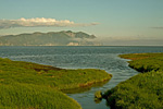 Россия, Магаданская область, Охотское море, Ольский лиман