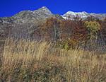 В окрестностях приюта Холодный осень уже вступила в следующую стадию. На некоторых деревьях листья облетели, на других стали коричневыми. Мир здесь уже не так ярок.