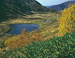 Россия, Западный Кавказ, Краснодарский край, Кавказский заповедник, Семиозёрье, перевал между реками Уруштен и Лаура