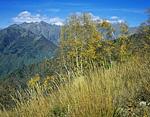 Россия, Западный Кавказ, Краснодарский край, Кавказский заповедник, долина реки Лаура