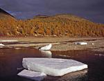 Россия, Республика Саха(Якутия), Оймяконский улус, восточные окрестности озера Лабынкыр, долина ручья Лабынкырского.