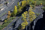 Россия, Якутия, республика Саха, Момский район, Момский хребет, долина реки Матага-Эселях